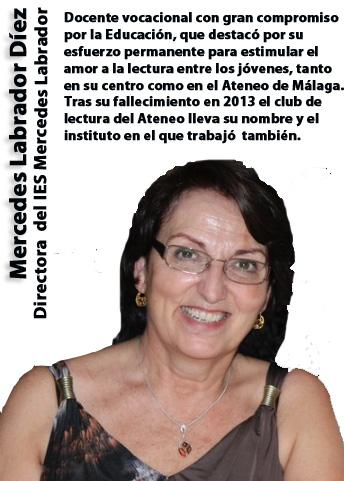 Mercedes_Labrador