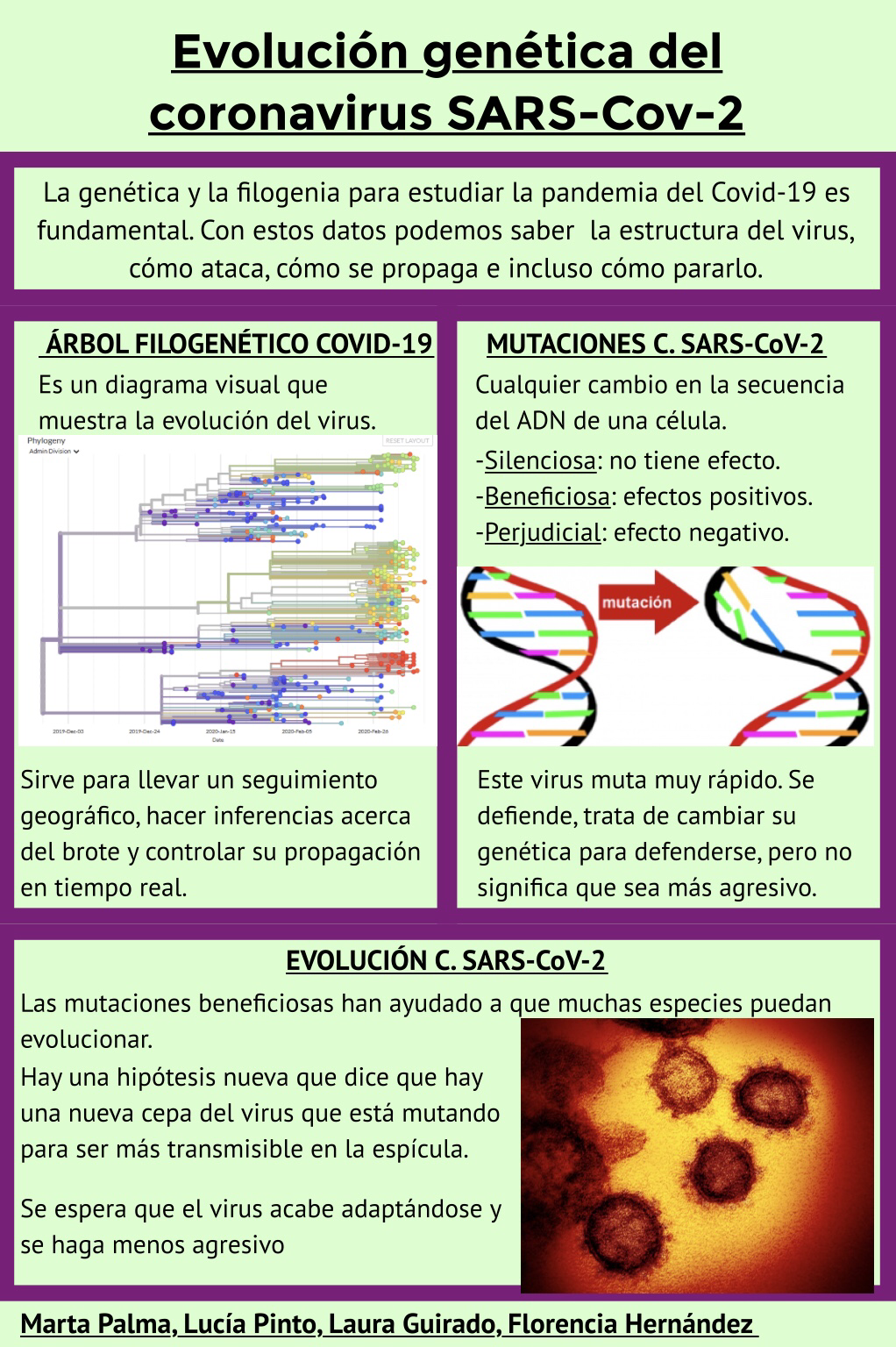 PÓSTER-CIENTÍFICO-SOBRE-LA-EVOLUCIÓN-GENÉTICA-DEL-CORONAVIRUS-SARS-CoV-2-12-may-2020-17_53